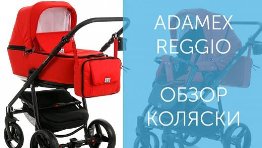 Обзор коляски Adamex Reggio