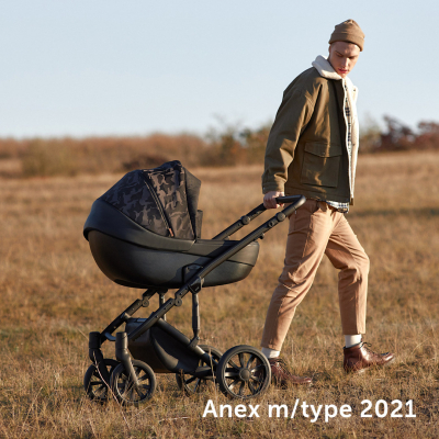 Коляска Anex m/type special edition 3 в 1